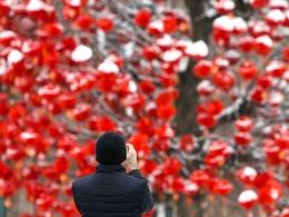 比利时小城中国年满城红灯笼