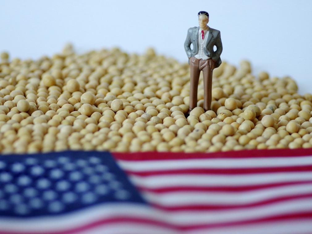 贸易战向大豆开刀代价显现 中国将迎来物价波动